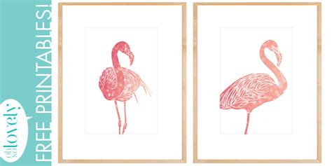 printable free images freebies pink flamingo printables oh so lovely blog