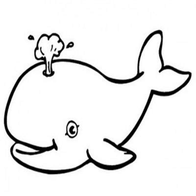 whale clipart black and white white whale clipart clipartxtras