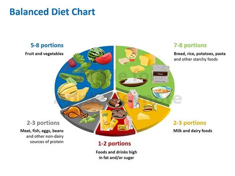 healthy diet diagram images of food groups cliparts co