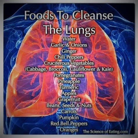 Detox Lungs Fast by Food For Lungs Cleansing Remedies