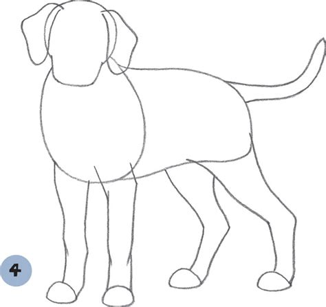 how to a dalmatian image gallery how to draw dalmatian