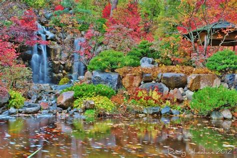 royal torvaianica omd 246 om japanese gardens rockford illinois pin by kathy