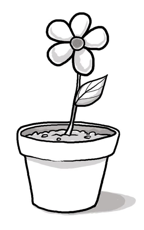 flowers a grayscale coloring book grayscale coloring books volume 69 books flower pot mychurchtoolbox org