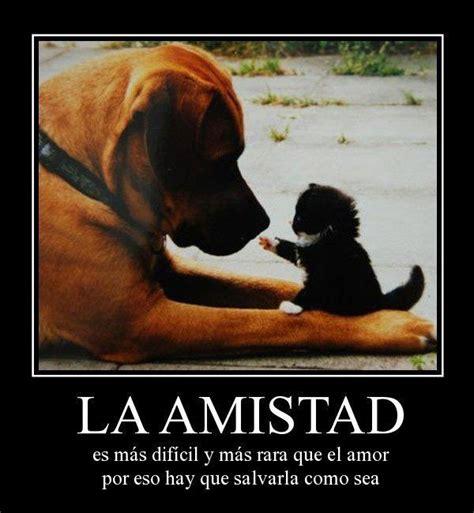 la amistad es mas dificil y mas rara que el amor frases de amistad para que etiquetes amigos todas frases