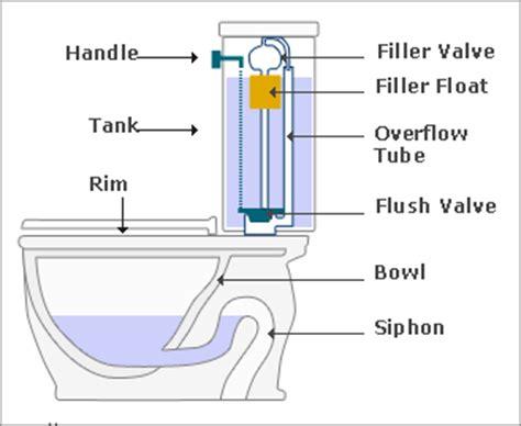 plumbing toilet plumbing services in new york city