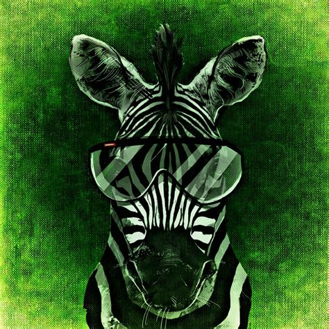 imagenes en cool free illustration zebra cool abstract funny free