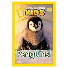 the lives of penguins books 1000 images about one cool friend on penguins