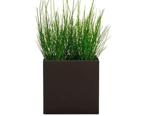 White Square Vase 10 Easy Pieces Bronze Garden Planters Gardenista