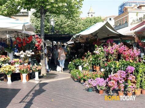 mercato fiori festa dei defunti racket e abusivi nel mercato dei fiori