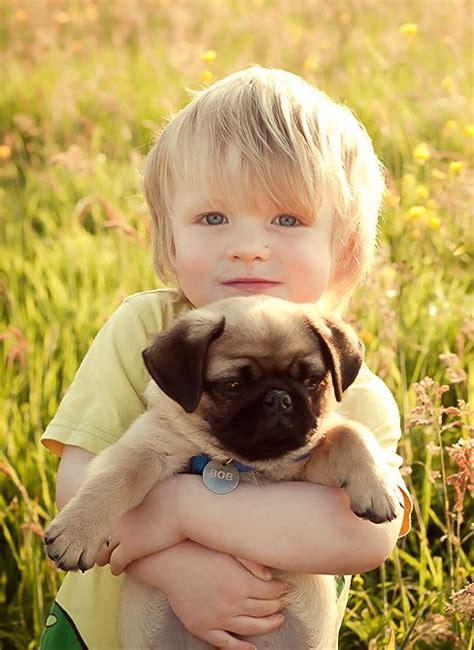 pug child 132 best pugs o my images on pug dogs
