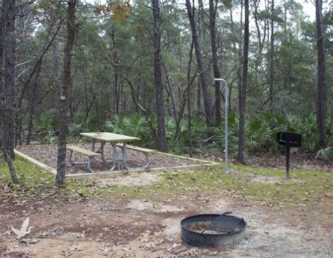 Buffalo Grill Priest by Cing And Rv Locations In Walton County Walton Outdoors