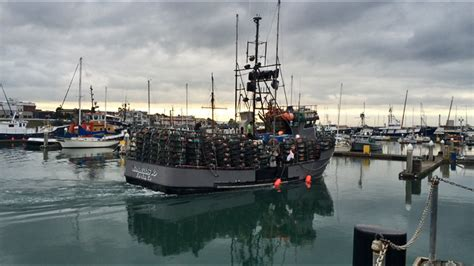 dungeness crab boats oregon wa pnw crabbers dungeness - Cost Of Fishing Boat Crab