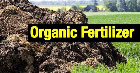 is fertilizer organic fertilizer