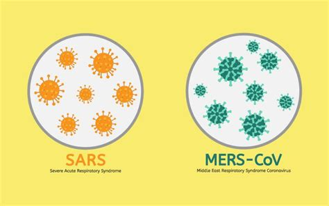 mers middle eastern respiratory syndrome