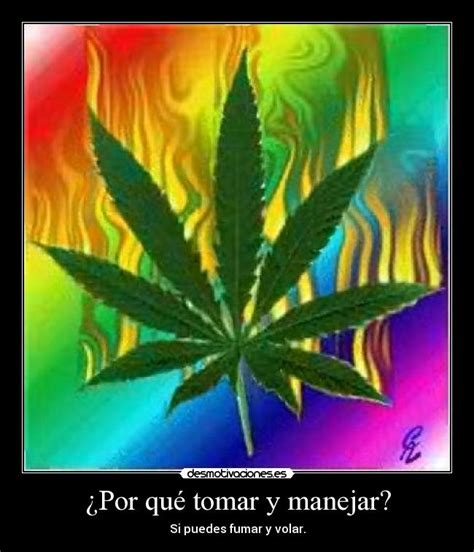 frases fumar marihuana pictures to pin on pinterest