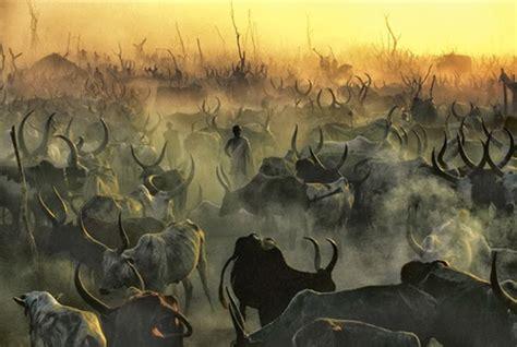 impresionantes imagenes de una tribu de sudan 34 amazingly beautiful pictures of the sudanese dinka