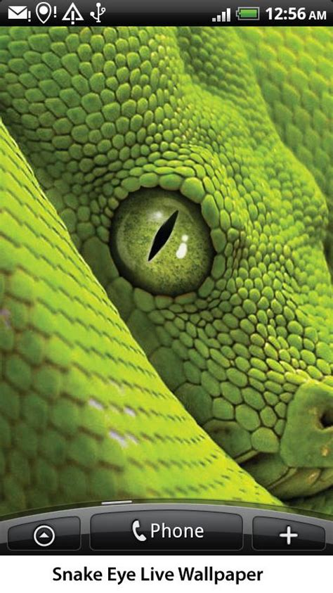 eye live snake eye live wallpaper android apps on play