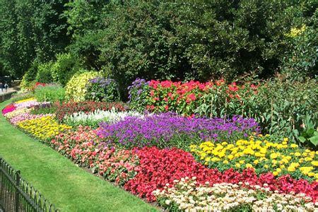 annual garden flowers flowers for flower flowers gardens designs ideas