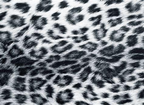 print wallpaper animal print desktop backgrounds wallpaper cave