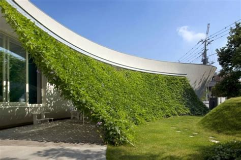 Organic House | organic house with curved vertical greening interior