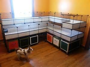 Fancy Rabbit Hutches Fancy Guinea Pig C Amp C Cage