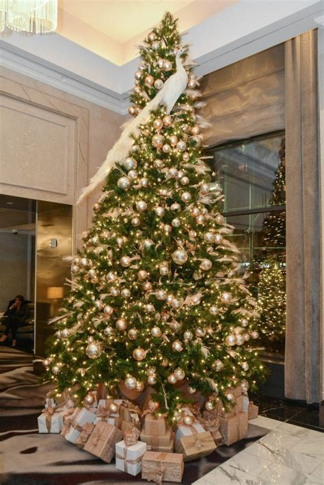 christmas trees for sale close to home cheap real trees for sale fishwolfeboro