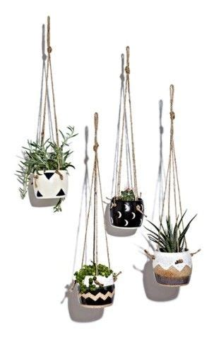 small hanging plants 1000 ideas about hanging planters on pinterest plant