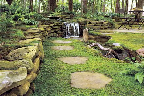 gardening in the pacific northwest the complete homeowner s guide books using moss in pacific northwest coastal gardens