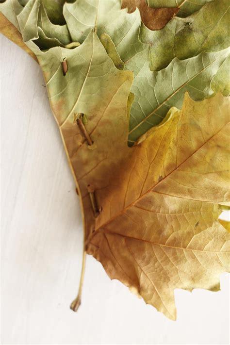 Bi Os manualidades con hojas para ni 241 os escarabajos bichos y