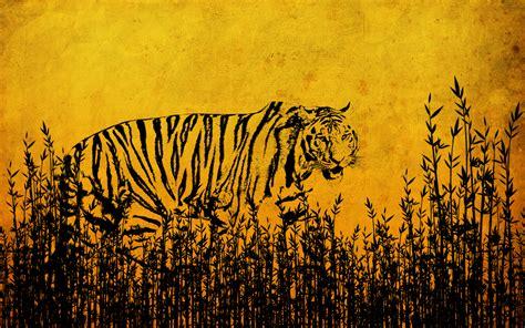 wallpaper cartoon tiger tiger tigers wallpaper 10309349 fanpop