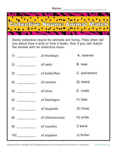 Collective Nouns Worksheets For Grade 6 by Top 25 Best Collective Nouns Worksheet Ideas On