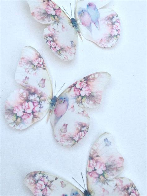 3d Butterfly Flowers Soft 4 shabby chic pastel budgies roses 3d wall stickers birds flowers butterflies ebay