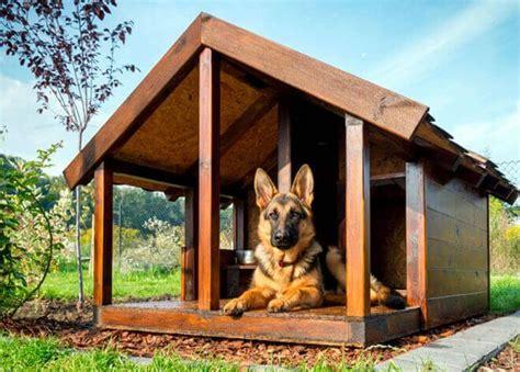 cucce da interno per cani taglia grande cucce per cani da esterno come costruire una cuccia per