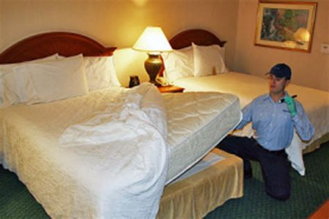 bed bug inspector bed bug control rid all