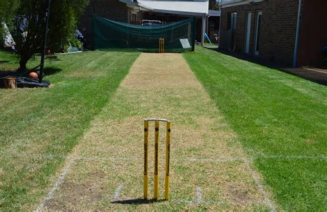 backyard cricket pitch backyard cricket on boxing day eve cricket com au