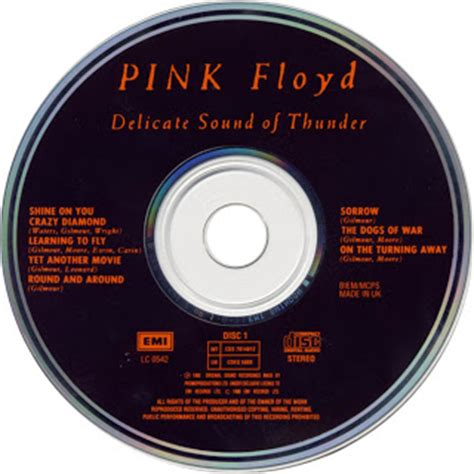 delicate sound of thunder comfortably numb saltez pink floyd discos