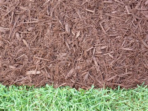 types of mulch major mulch installations orlando mulch delivery