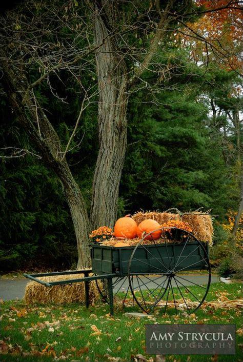 Best 25 Fall Yard Decor Best 25 Fall Yard Decor Ideas On Fall Mailbox