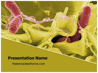 template ppt bacteria free free tissue bacteria powerpoint template