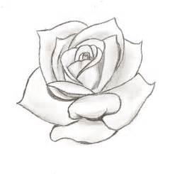 rose stencil cake ideas and designs rosen pinterest