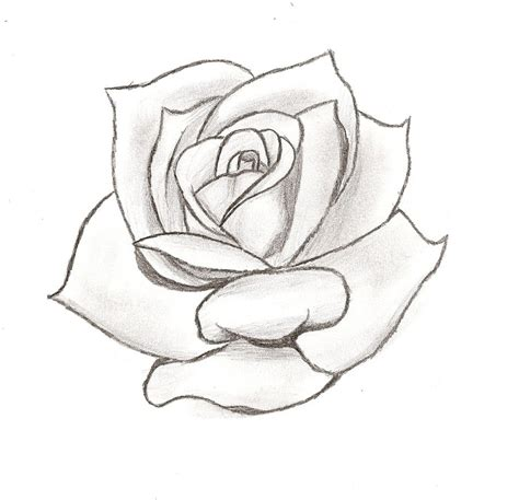 tattoo simple stencils simple rose tattoo stencil danielhuscroft com