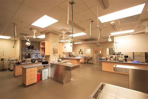 bda architecture veterinary hospitals general practice