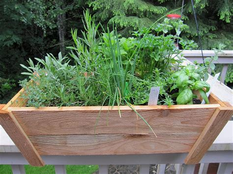 container herb garden - Herb Garden Containers