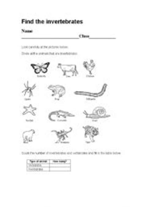 free printable worksheets vertebrates invertebrates english worksheets vertebrates invertebrates