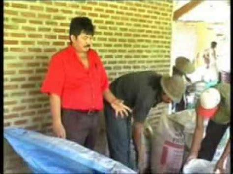 Bokashi Pupuk Kandang Sapi gadis bandung membuat kompos doovi