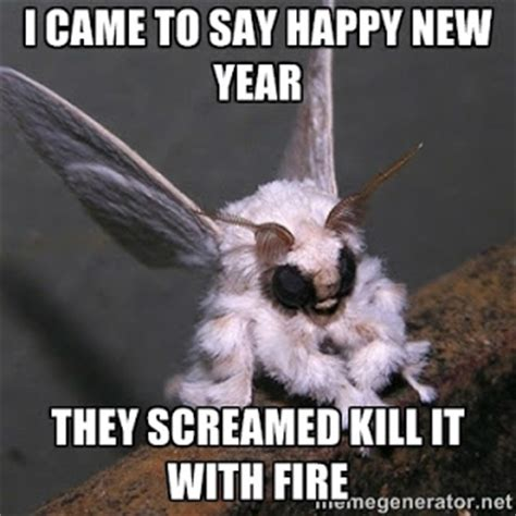 Happy New Year Meme - the world crafter december 2015