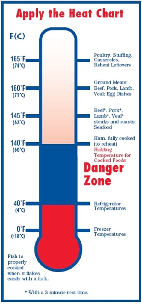 Termometer Safety apply the heat a chart of proper cooking temperatures for