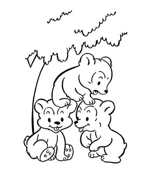 coloring page bear cub bear coloring pages coloring home
