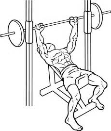 Will Bench Press Build Chest File Incline Bench Press 2 1 Png Wikimedia Commons