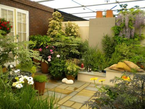 plantas para patio interior patio interior cincuenta ideas modernas para decorarlo